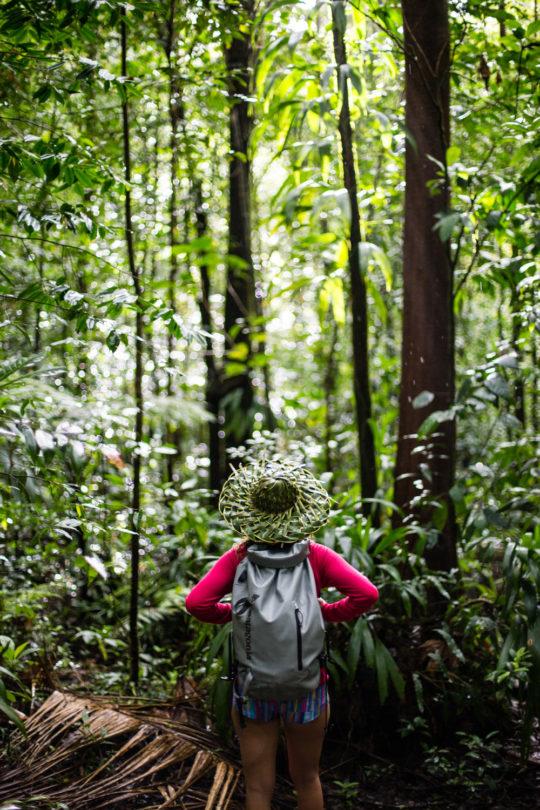 Seeking Adventurers – Dominica
